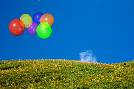 Beautiful balloon with blue sky and flower photo