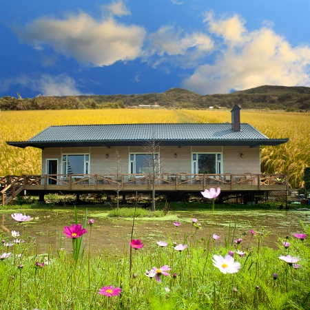 Beautiful small house with paddy around it Stock Photo - 14700008