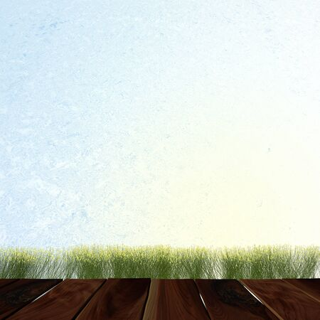 Water style wall and green grass on wood floor background  Stock Photo - 16130034