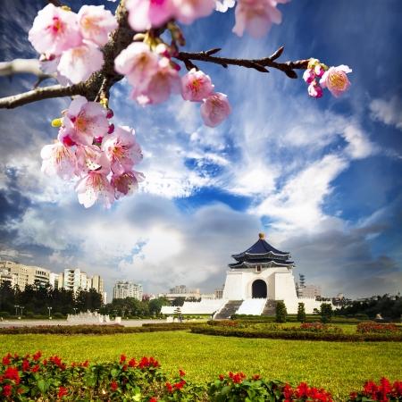 chiang kai shek memorial hall: chiang kai shek memorial hall in taiwan with nice sakura flower