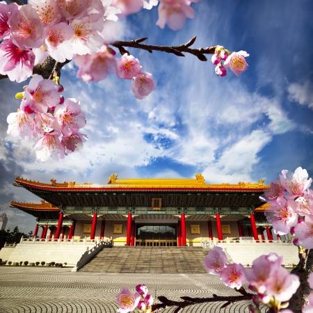Beautiful sakura in the temple Stock Photo - 17501461