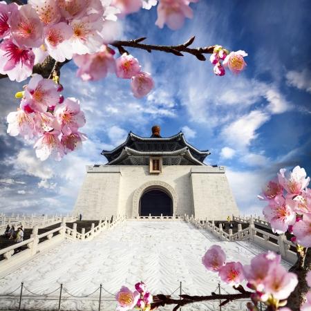 Beautiful sakura in the temple Stock Photo - 17501460