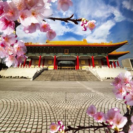 Beautiful sakura in the temple Stock Photo - 17501463