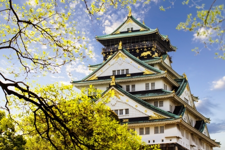 Osaka castle for adv or others purpose use