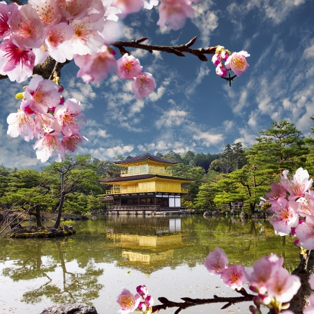kyoto: gold temple japan for adv or others purpose use Editorial