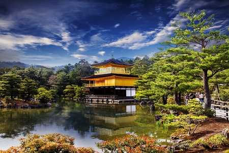 golden temple: Beautiful sakura with gold color Stock Photo