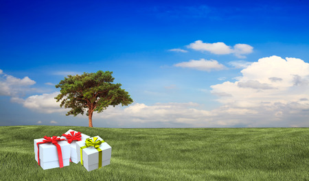 Present on grassy background  photo