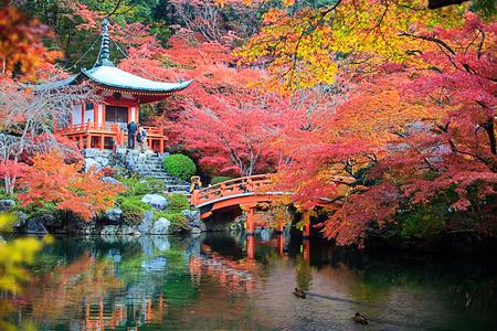 Kyoto, Japan - November 24, 2013  Daigo-ji is a Shingon Buddhist temple in Fushimi-ku, Kyoto, Japan