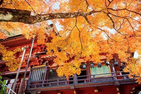 Nara, Japan - November 27, 2013  Tanzan Shrine , also known as the Danzan Shrine, is a Shinto shrine in Sakurai, Nara Prefecture, Japan