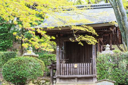 momiji: Kyoto, Japan - April 14, 2013: Sanjeong Temple with nice sakura at spring season Editorial