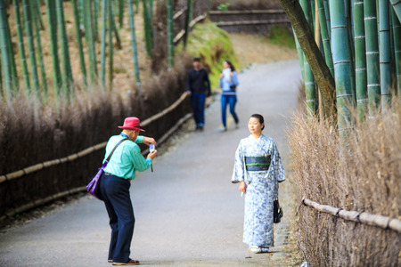 Kyoto, Japan - April 14, 2013: The bamboo forest of Kyoto, Japan