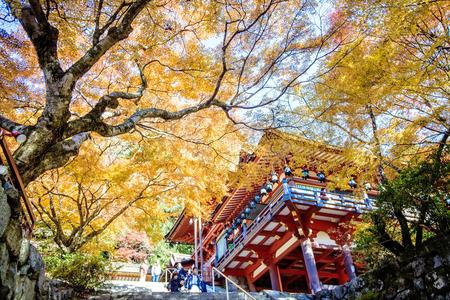 kink: Kyoto, Japan - Nov 27, 2013: Tanzan Shrine also known as the Danzan Shrine, the Tonomine Shrine and the Tonomine Temple is a Shinto shrine in Sakurai, Nara Prefecture, Japan