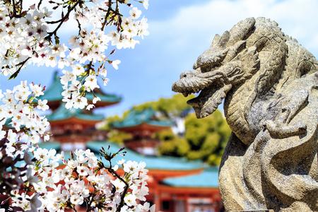 ninnaji: Sakura season, Kyoto, Japan for adv or others purpose use Editorial