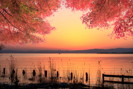 kawaguchi ko: Mt. Fuji with fall colors in Japan for adv or others purpose use