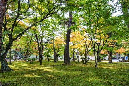 resemble: Kotoji Lantern in Kenrokuen garden has two legs, which resemble Kotoji, the bridge on a Koto. - Kanazawa , Japan