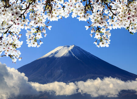unesco: the sacred mountain of Fuji in the background of blue sky at Japan for adv or others purpose use