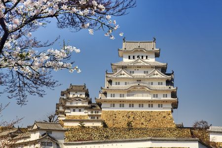 blossom time: himeji castle during cherry blossom time for adv or others purpose use