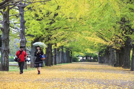 showa: Showa Memorial Park for adv or others purpose use Editorial