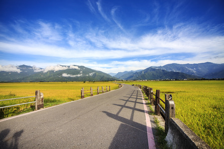 The beauty of the farmland in Taitung Taiwan for adv or others purpose use