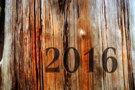 represents: 2015-2016 change represents the new year 2016 with white background