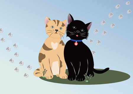 The cat with nice background illustrator design