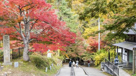 momiji: The Fudo stream and the red bridge at Mount Nakano-Momiji Editorial