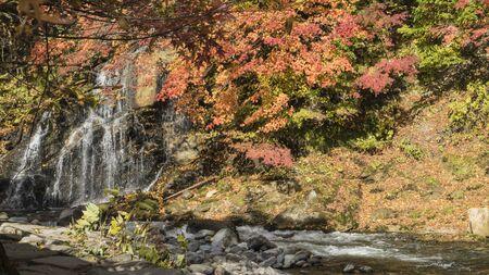 momiji: The Fudo stream and the red bridge at Mount Nakano-Momiji Stock Photo