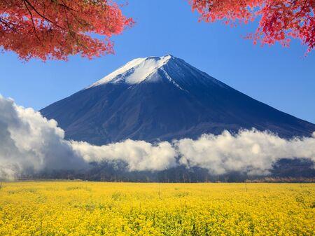 The image of beautiful fuji mountain japan Stock Photo