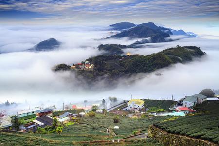The Alishan,Chiayi County,Taiwan:Sunset clouds Zdjęcie Seryjne