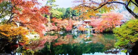 colorful maple trees: Kyoto, Japan - Nov 24, 2013 : Daigo-ji temple with colorful maple trees in autumn, Kyoto, Japan Editorial