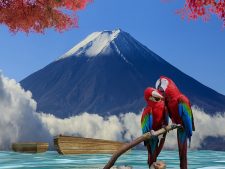 The potrait of Blue & Gold Macaw with nice background view