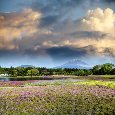 The spring season in japan with fuji mountain as background Stock Photo