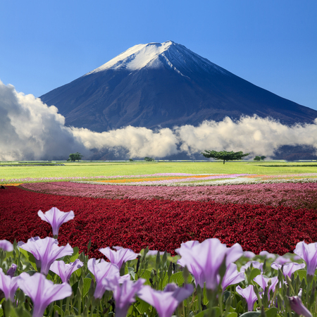 The imaging of beautiful landscape with nice nature color