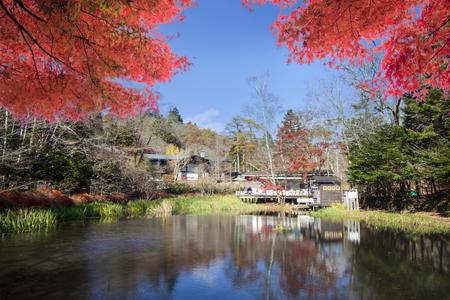 The Imaging of autumn color of pond, Karuizawa, Nagano, Japan