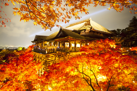 The beautiful landscape veiw of autumn season with colorful maple tree Klyomizu dera temple Kyoto is most popular travel destination in Japan 版權商用圖片 - 84467094