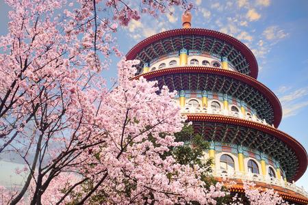 台北、台湾の素敵な空も綺麗でさくらガーデン