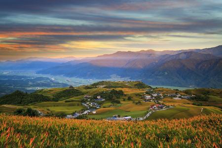 The Orange daylily flower at sixty stone mountain, Fuli, Hualien, Taiwan
