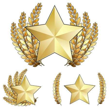 Gold Star Award with Laurel Wreath Stock Vector - 9931488
