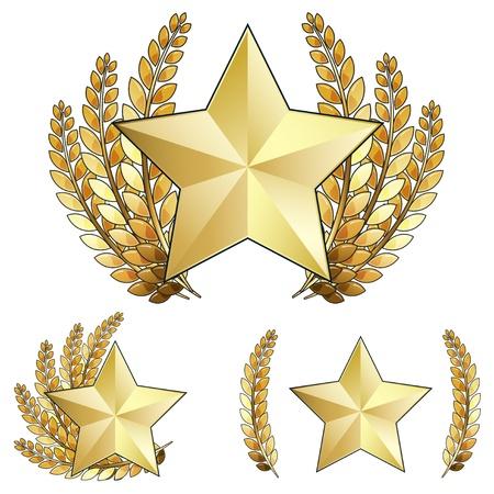 Prix ??de l'étoile d'or avec couronne de laurier Banque d'images - 9931488