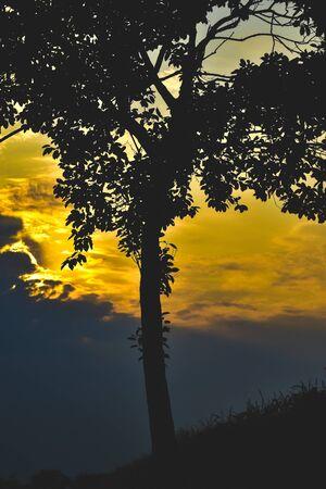 Wonderful Sunset in village side Banco de Imagens