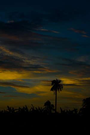 Wonderful Sunset in village side