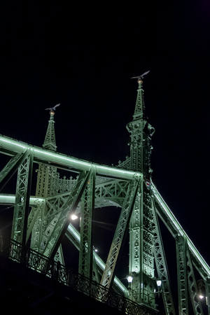 The Freedom bridge in Budapest Hungary by night Banco de Imagens
