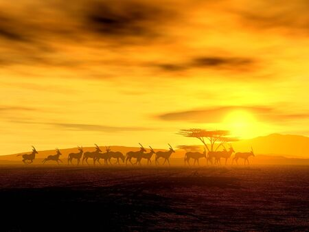 peacefull: Illustration of an african wildlife scenery