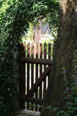 shady: aged romantic gardendor