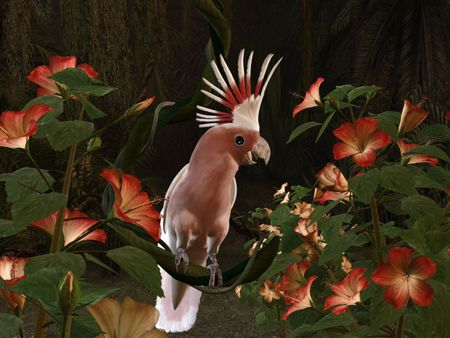 3d-illustration of an Inca Cockatoo - sitting on a liane