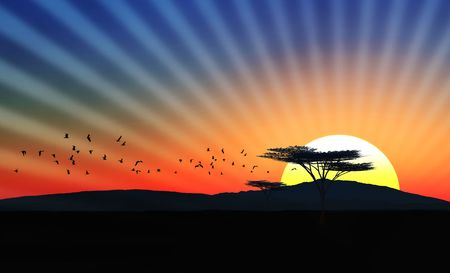 Illustration of an african landscape with sunsetsundown and birds in the sky Stock Photo