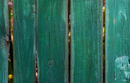 old wooden fence green close up day Banque d'images - 122623839