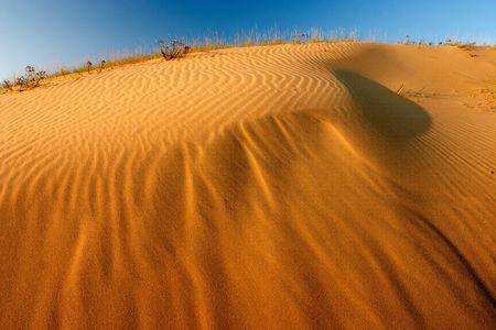 lithuania: Dunes in Neringa,Lithuania Stock Photo