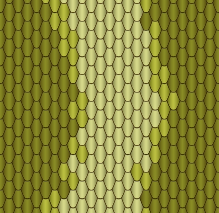 snake leather: Abstract background - snake skin  vector Graphics Illustration