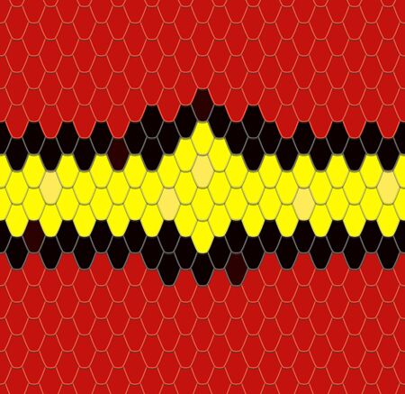 coral snake: Abstract background - snake skin Graphics